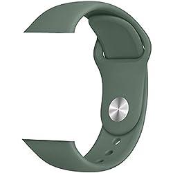 YHSY Bracelet de Montre Bracelet de Sport Bracelet en Silicone coloré Bracelet de Couleur Multicolore Bonbon pour Iwatch 5 4 3 Bracelet Bracelet 42 mm ou 44 mm SM Vert pin
