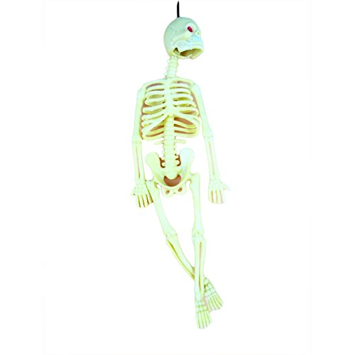 skgardeniamy Lustige Trick Schädel Skelett Halloween Modell Spielschlüssel Anhänger Key Party Dekor Spielzeug Halloween Geschenk ()