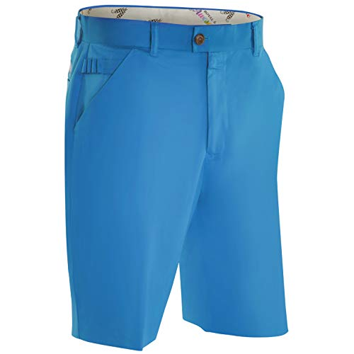 Royal & Awesome Herren Golf Shorts - Why So Blue