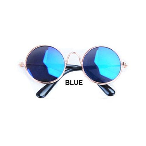 Aprigy - Cat Eye-Wear Pet Sonnenbrille Little Dog Glas-Katze Brille Fotos Props Hund Katze Zubeh?r Tierbedarf f¨¹r Haustier-Produkte [Blau ]