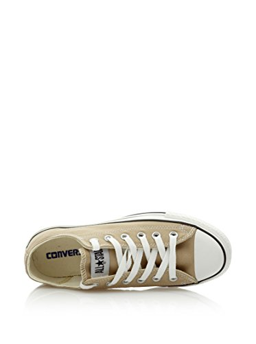 Converse - Fashion / Mode - All Star Basse Taupe - Taupe Simply Taupe