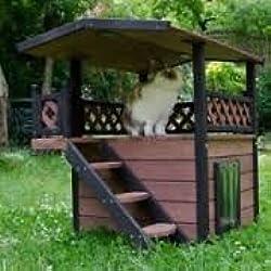 Gato Casa de exterior