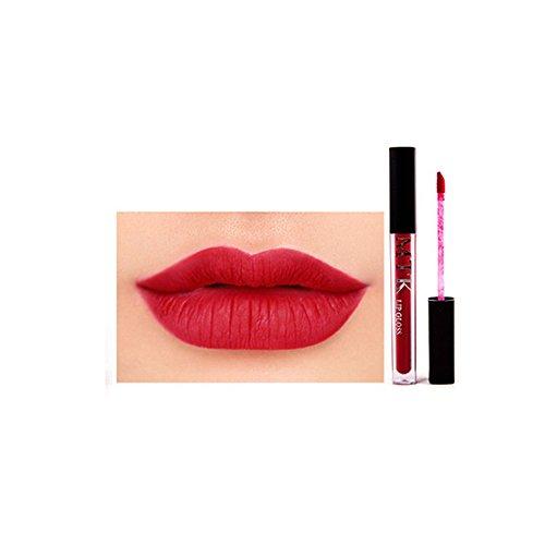 DaySing Brosse Pinceaux Maquillage,Nouveau Rouge à LèVres Brillant à LèVres éTanche Longue DuréE Non Fade Poils Synthetiques Doux Et sans Cruauté