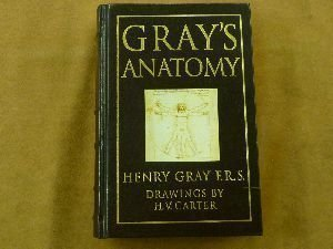 grays-anatomy-by-henry-and-hv-carter-gray-published-by-barnes-noble-books-15th-fifteenth-edition-199
