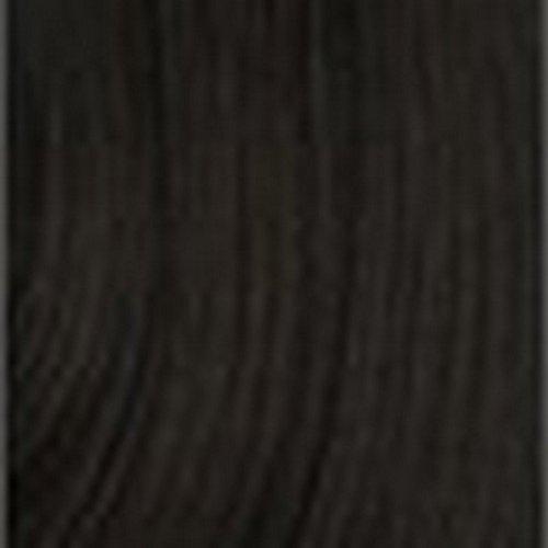 Modèle Modèle Nubi Kinky Twist cheveux Tresses