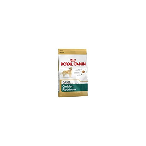 ROYAL CANIN Golden Retriever Hund trocken kg.3 - Hund Futter trocken Kroketten