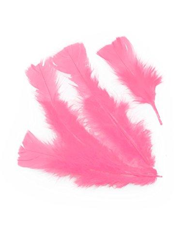 Federn 100er-Pack pink Keine ()