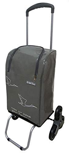 Bo Time BC-CHWC-SP11PS-PVC-6 Einkaufstrolley, 2/6, wasserdicht, 40 l/30 kg, Teleskopgriff, Reißverschluss, Anzahl der Räder: 6 Räder (Treppengestell), mehrfarbig