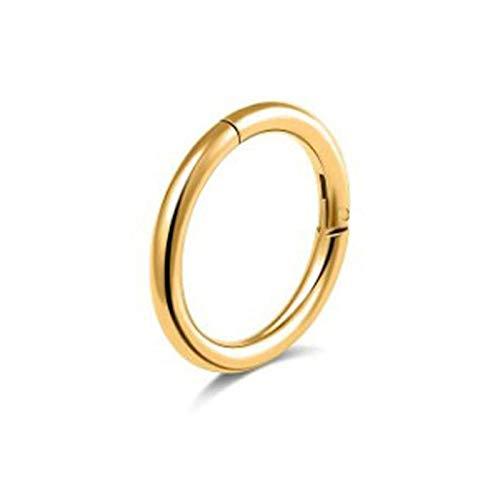Aeici 1 Stück Piercing Hoop Chirurgenstahl Hoop Circle Piercing Nase Ring Gold