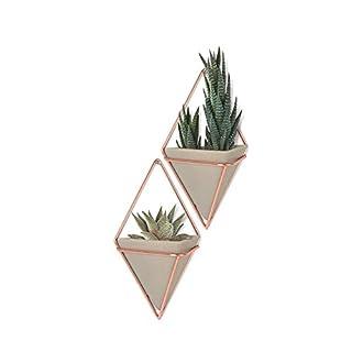 Umbra Trigg Wandvase & Geometrische Deko - Übertopf Für Zimmerpflanzen, Sukkulenten, Luftpflanzen, Kakteen, Kunstpflanzen und Mehr, Keramik / Metall, Weiß / Mattes Messing