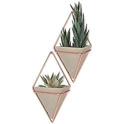 UMBRA Trigg, Jardinière Suspendue & Pot Géométrique pour Décoration Murale - Idéal pour des Plantes Succulentes, des Plantes Aériennes, des Mini Cactus, des Fausses Plantes et Autres, Résine Béton/Cuivre (Lot de 2)