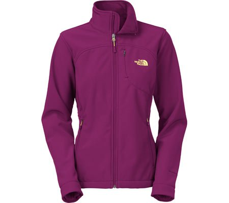The North Face Men's Apex Bionic 2 Jacket -