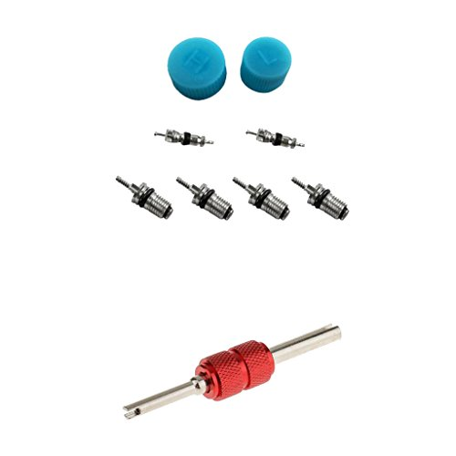 Gazechimp 9 x Klimaanlage Ventilwerkzeug Ventile Ventileinsatz Reparatur mit Ventilentferner für Auto KFZ PKW