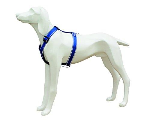 freedog fd4002611Klettergurt Reflektierende Nylon, für Hund, blau