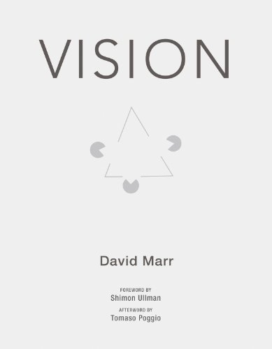 vision-a-computational-investigation-into-the-human-representation-and-processing-of-visual-informat