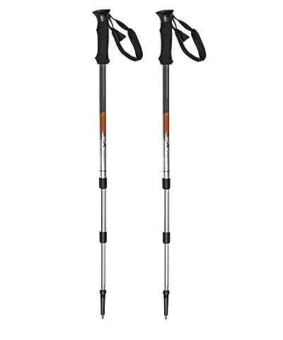 GGMM Baxter outdoor products factory direct custom aluminum alloy 7075 Telescopic walking stick poles walking stick walking