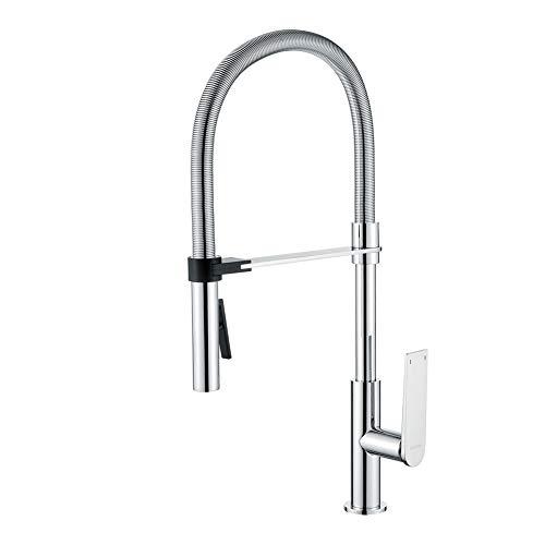 GRIFEMA LYON-G14001, Experte Küchenarmatur - Wasserhahn Küche mit Flexibler Auslauf, Profibrause/Einhebel-Küchenmischer, G3/8'' Anschlüsse, Universalschwenker, Hochdruck, Chrom (Küchen-experte)