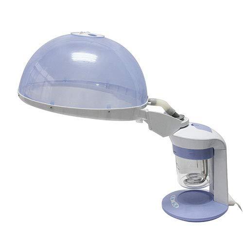 WQSTEAMER Hair Steamer und Facial Steamer 2 in 1 Funktions-Körperpflege-Ozon-Dampf-Maschine und Haar-Dampf-Maschine