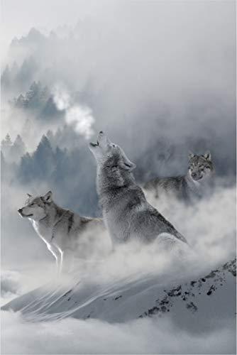 Desconocido Estor Digital Lobos ¡¡ ESTORES ENROLLABLES TRANSLUCIDOS A Todo Color Lobos (160X175)