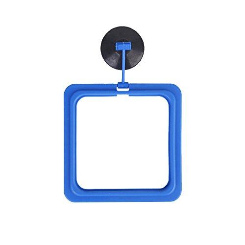 SODIALR-blu-Piazza-Feeding-cerchio-per-acquario