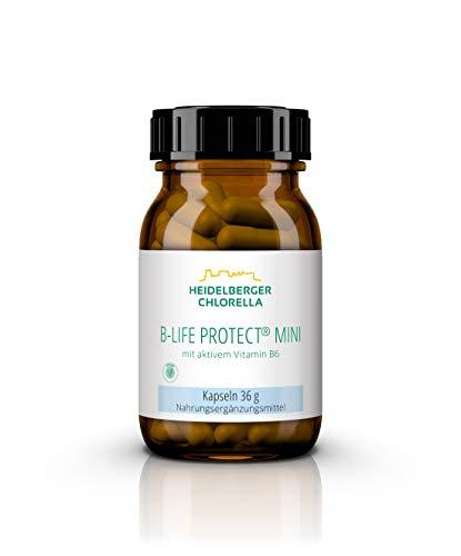 Heidelberger Chlorella - B-Life Protect mini Kapseln, mit aktivem Vitamin B6 (Pyridoxal-5-Phosphat), vegan, gute Bioverfügbarkeit, hergestellt in Deutschland, 36 g, 60 Kapseln -