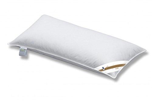 Kopfkissen Spessarttraum 40 x 80 / 600 g - Dreikammer Kissen Premium Weich - Füllung 90% Daunen - Bezug 100% Baumwolle thumbnail