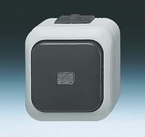 busch jaeger ausschalter ap ws 2601 6wsgl. Black Bedroom Furniture Sets. Home Design Ideas