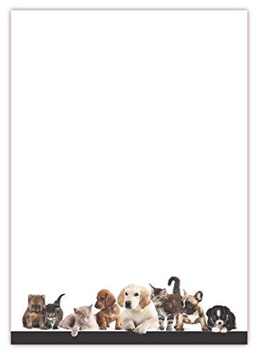 Motiv Briefpapier (Tiere-5042, DIN A4, 100 Blatt). Einseitig bedrucktes Briefpapier, sehr gut beschreibbar, Motivpapier für alle Drucker/Kopierer geeignet Motiv Tiere Hunde Katzen Tierhandlung Zoo Tierbedarf