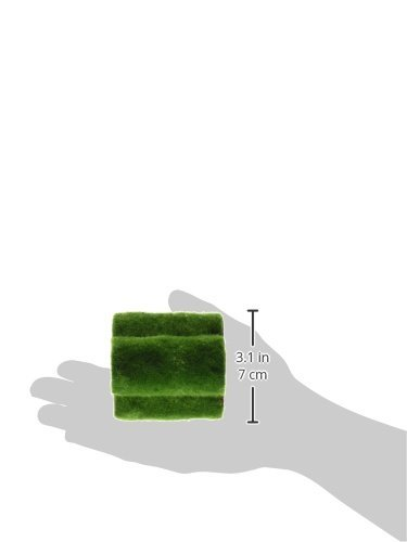 Penn-Plax Hideaway Pipes Aquarium Decoration Realistic Look with Green Moss Like Texture | Fun for fish and adds a to… 2