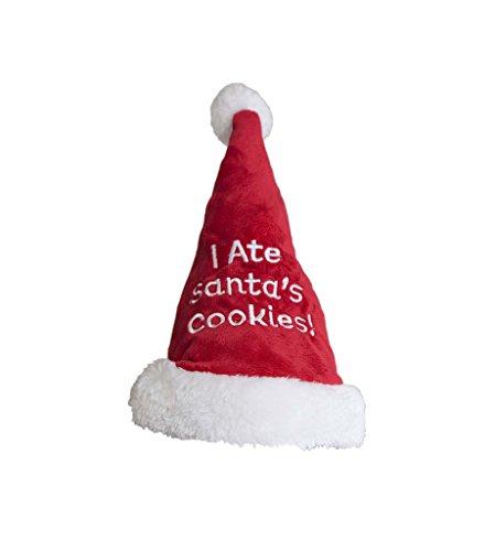 Outward Hound 11005Weihnachten Urlaub I Ate Santa 's Cookies Santa Hat, klein