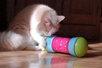 PIPOLINO-M Rose distributeur mobile de croquettes pour le bien-être et santé des chats