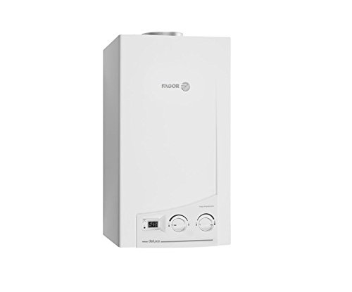 Calentador de gas