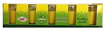 Glass Citronella Candles 5 Pk by Pinsbury