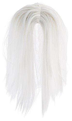 WIG ME UP ® - PW0210-P60 Perücke & Bart Set: Weißer Zauberer Hexer White Wizard (Druide Kostüm)