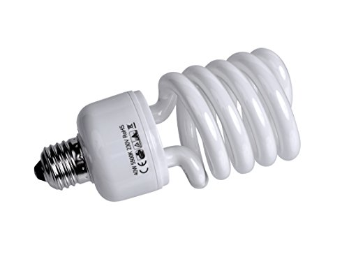 Bresser F000156 Spiral Tageslichtlampe (E27/40 Watt)