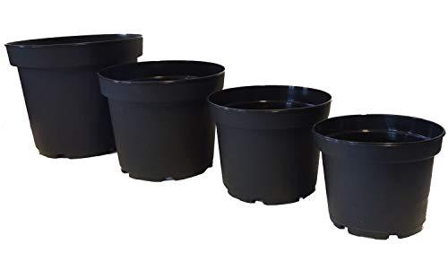 Fuchs seit 1895 10er Set Blumentopf MCI Containertopf aus Kunststoff, Größe:18cm -