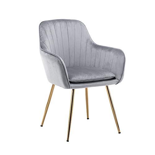 GYY YZ ZZ Chair Home Dining Chair, Küchenstuhl, Make-up Chair Sessel, Geeignet Für Studie Schlafzimmer (3 Farben) (Farbe : Hellgrau) -
