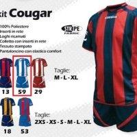 Preisvergleich Produktbild Mag Classics Kit Fußball Komplett Cougar Sport L weiß/hellblau Shirt