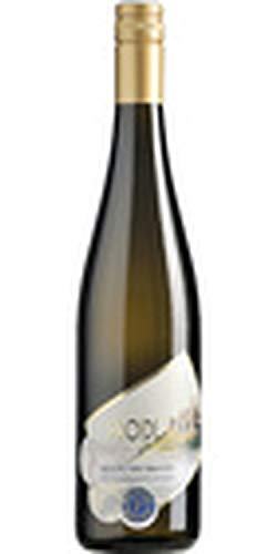Riesling Ried Pfeningberg 1. Lage Magnum 1,5 L - 2017 - Proidl