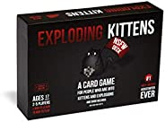 Exploding Kittens: NSFW Edition (Contenuto esplicito - Adults Only) [Edizione: Inglese]