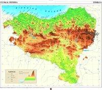 Euskal Herria fisikoa eta udalerriak eta eskualdeak: Mapa murala (Kartografia) - 9788497832502