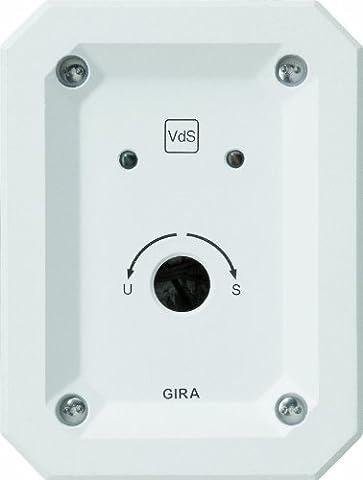 Gira 013500 Schlüsselschalter Unterputz Alarm