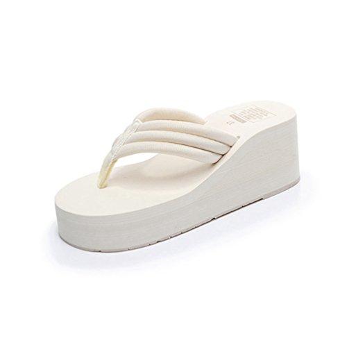 Plateau Flip Flops Wedge Sandalen Slip auf Antiskid Strand Pantoffeln (Dressy Flip-flops)