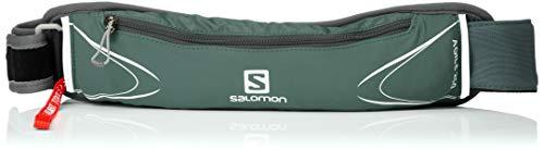 SALOMON Agile 250 Belt Set Cinturón de Corriendo, Incluye Botella de 250 ml, Unisex Adulto, Gris (Urban Chic), Talla única