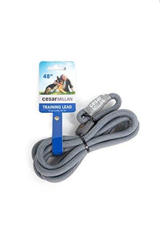 Cesar Millan Nylon Trainingsleine für Hunde Grau - Länge 120 cm, Durchmesser 1,2 cm