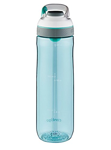 Contigo AUTOSEAL Cortland Water Bottle, 24 oz., Greyed Jade