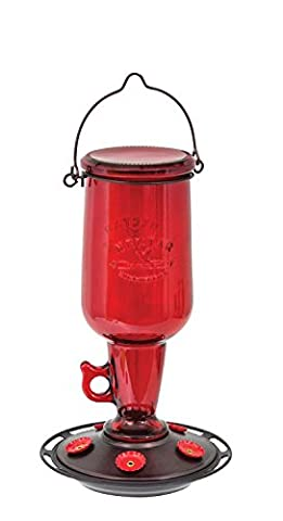 More Birds Vintage Red Glass Jug Hummingbird Feeder, 23 oz Nectar Capacity, Hunter Green