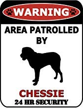 Chesapeake Metall (Vivityobert Warnschild mit Aufschrift Warning Area Patrolled by Chesapeake Bay Retriever, 24 Stunden Sicherheitsschild, Aluminium, Metall-Warnschild, Heimdekorationsschild)