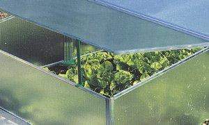 Polycarbonat Universal Stegplatten für Gewächshäuser klar 1500 x 700 x 4,5 mm - 2