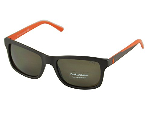 Polo Brille (PH2057 5001 53)